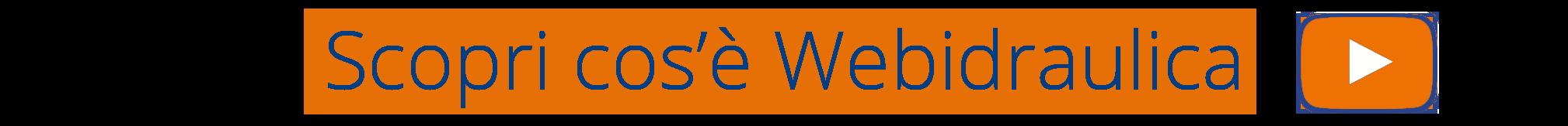 Video illustrativo di presentazione - webidraulica.it - webidraulica.it